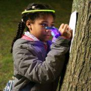 Les 10 ans du Parc de la Roseraie de VillepinteLes 10 ans duPArc de la roseraie de Villepinte