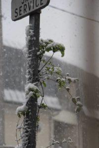 Neige sur Villepinte (93) février 2018a